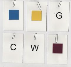 Lauren-sample-colors
